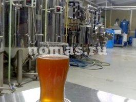 живое пиво Додино