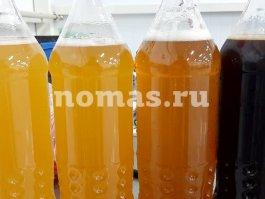 сорта пива TENGRI beer Кыргызстан